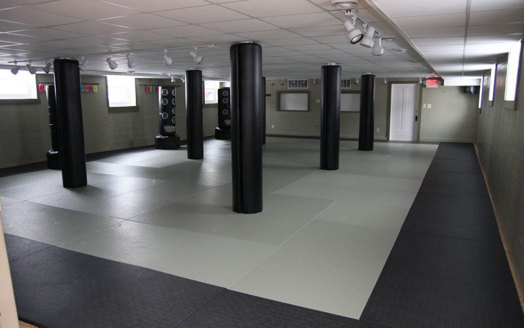 What is Wrong with MMA and Most Martial Arts Schools?