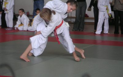 What Martial Arts Training Does the Peacemaker Academy Include, and Why?